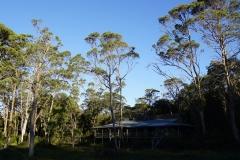 tasmanien 372 copyright piotr nogal