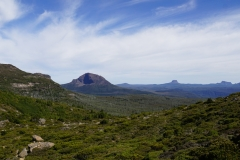 tasmanien 376 copyright piotr nogal