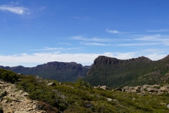 tasmanien 377 copyright piotr nogal