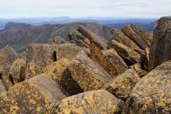 tasmanien 382 copyright piotr nogal