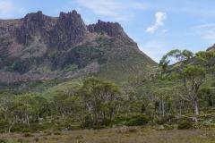 tasmanien 390 copyright piotr nogal