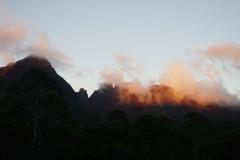 tasmanien 422 copyright piotr nogal