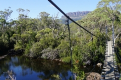 tasmanien 435 copyright piotr nogal