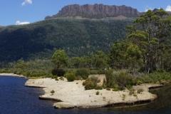 tasmanien 437 copyright piotr nogal
