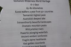 tasmanien 441 copyright piotr nogal