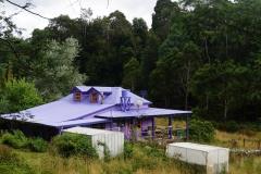 tasmanien 447 copyright piotr nogal