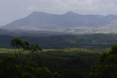 tasmanien 448 copyright piotr nogal