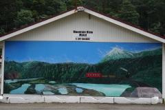 tasmanien 451 copyright piotr nogal