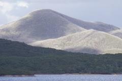 tasmanien 459 copyright piotr nogal