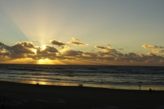 tasmanien 481 copyright piotr nogal