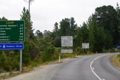 tasmanien 492 copyright piotr nogal