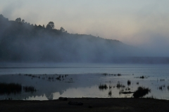 tasmanien 501 copyright piotr nogal