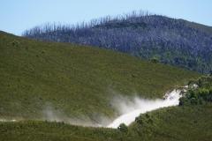 tasmanien 509 copyright piotr nogal