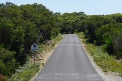 tasmanien 519 copyright piotr nogal