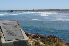 tasmanien 523 copyright piotr nogal