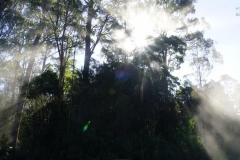 tasmanien 527 copyright piotr nogal