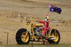 tasmanien 541 copyright piotr nogal