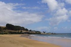 tasmanien 545 copyright piotr nogal