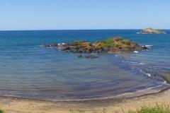 tasmanien 547 copyright piotr nogal