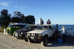 tasmanien 552 copyright piotr nogal