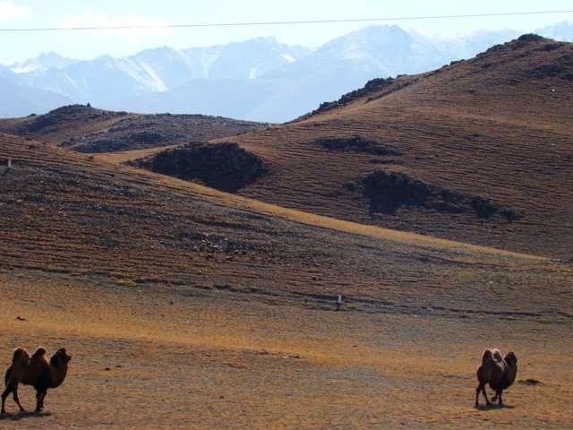 Bishkek-Chengdu