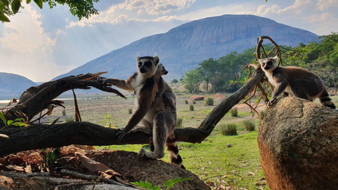 Madagaskar erfahren
